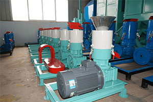 Do You Know The Advantages Of Biomass Pellet Fuel Wood Pellet Machine On Sale-2