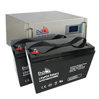 Dongjin LiFePO4 Battery