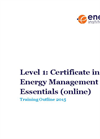 Level 1: Certificate in Energy Management Essentials (Online) Brochure