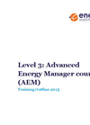 Level 3: Advanced Energy Manager (AEM) Brochure