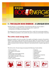 Bois Energie 2010 - Report of the Exhibition