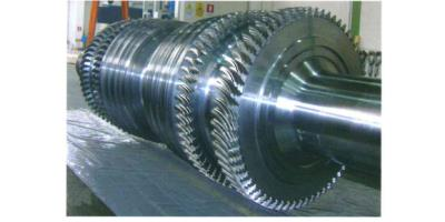 Model 600 MW - LP Shaft