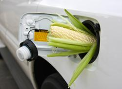 BioEthanol - Analyzer System for Renewable Biofuels