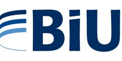 BIU - Energy Management Consultant
