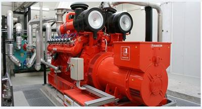 Natural Gas and Biogas Gensets