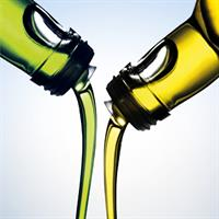 Process equipment and technology solutions for oleochemistry - biodiesel, fatty acids industry