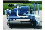 CHP  Units for Biogas Plants