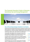 Whitepaper: The Corporate Executive's Guide to Enterprise GHG and Energy Management