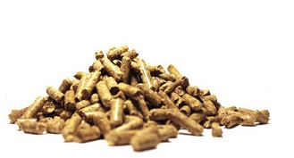 Enviva - Wood Pellets Fuel