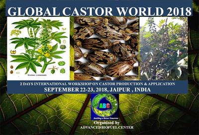 Global Castor Biodiesel World 2018
