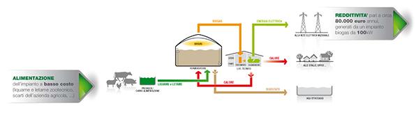 business plan impianto biogas 100 kw