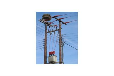 Insulator Enhancement Products for Overhead Power Networks