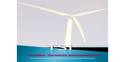 Turbine Services International