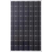 Model 245 Wp - Monocrystalline Photovoltaic Module