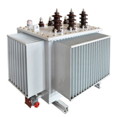 CEEG - Amorphous Metal Material Type Oil Immersed Transformer