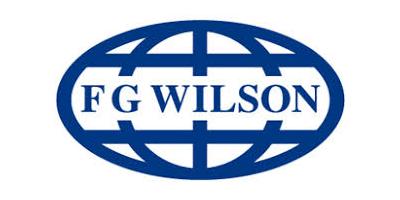 P249-3 - Diesel Generator Sets - Diesel Generator Sets by FG Wilson