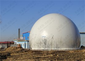 Model AMA Type - Biogas Storage Tank