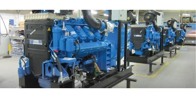Diesel and Gas Generator Sets