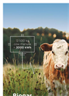 Biogas Power Plant - Brochure