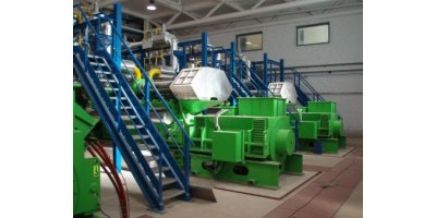 Integrated Biomass Gasification Power Plant (IBGPP)