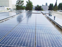 Commercial Solar Panel Cleaning Services-1