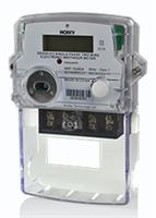 Holley Technology - Model DDS28-IC2 - Residential Meter